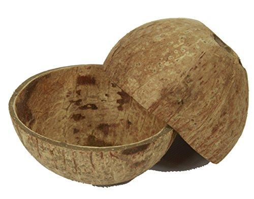 Nature Parts 2er Set Kokosschale Becher, Kokosnuss, Deko Schale, Kokos Nuss Gr. 12-16cm Dekoschale, Holz, 13 x 18 x 9 cm, 2-Einheiten
