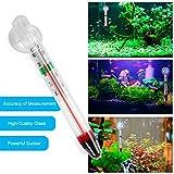 Formulauff - Contador de Vidrio termómetro de Temperatura del Agua para depósito de Peces acuarios con Ventosa Digital para hogar 0-44 Grados CE - Blanco
