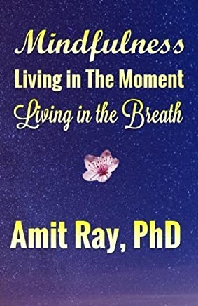 Mindfulness: Living in the Moment Living in the Breath by Amit Ray (2015-10-28)