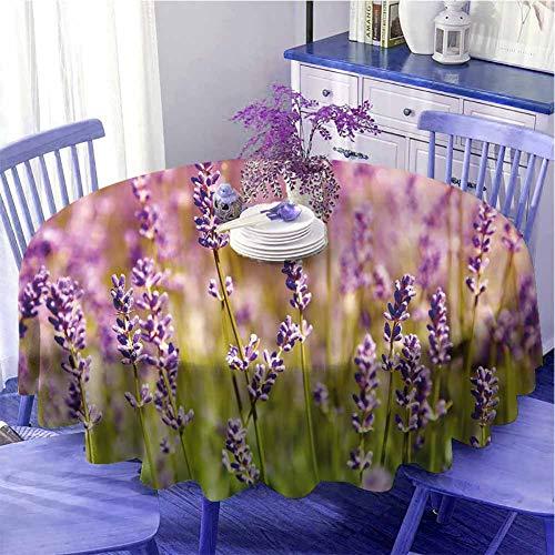 Lavanda Camping mantel redondo floreciente jardín rural fragante plantas botánica granja orgánica flora para fiestas diámetro 39 cm lila verde lima