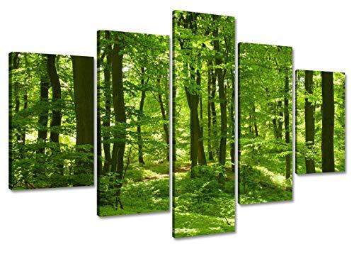 Visario Leinwandbilder 5507 Bild auf Leinwand 160 cm Bäume fertig gerahmt, 5-teilig Marke, original