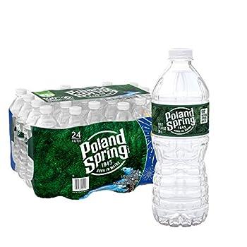 Poland Spring 100% Natural Spring Water 16.9 oz Plastic Bottles  Pack of 24