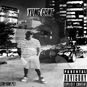 Still Cane