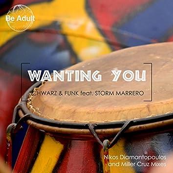 Wanting You (feat. Storm Marrero)