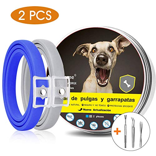 Magichome Zeckenhalsband für Hunde und Katzen Flohschutz 63cm 2 Stücke 8 Monate Schutz Verstellbar Natürliche & Sicherheit