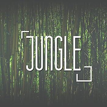 Jungle - Green Ferns Fresh Air Freedom Calm Quiet Dancing on the Sand