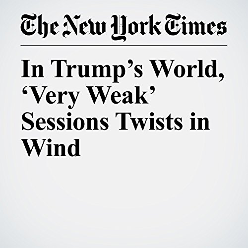 In Trump's World, 'Very Weak' Sessions Twists in Wind copertina