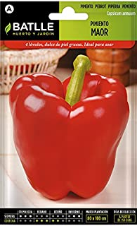 Batlle Gemüsesamen - Paprika Maor 225 Samen