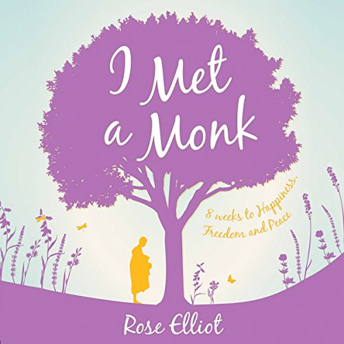 I Met a Monk audiobook cover art