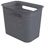 Rotho Brisen, caja de almacenamiento estrecha 7l con 2 asas, Plástico PP sin BPA, antracita, 7l 26.2 x 18.0 x 21.1 cm