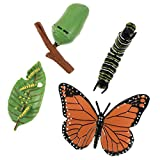 DOITOOL 4Pcs Insect Figurines Life Cycle of a Butterfly Caterpillars to Butterflies Safariology Bug Figures Educational Toy for Kids Toddlers