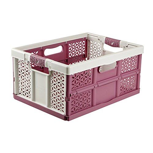 keeeper Stabile Profi-Klappbox mit Soft-Touch Griffen, 48 x 34,5 x 23,5 cm, 32 l, Lea, Weiß/Lila