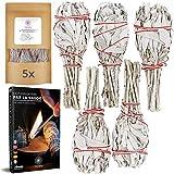 Salvia Blanca de Purificación - X5 Salvias para Quemar + E-Book - Elimina Las Energías Negativas - Favorece la Meditación [Satisfacción o Reembolso]