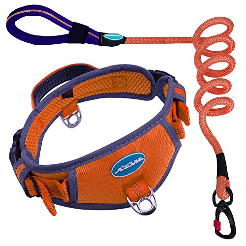 ThinkPet Heavy-Duty Dog Collar with Handle - Reflective Padded Sport Nylon Collar and Comfortable Handle Reflective Leash Set XL Orange