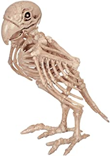 Queenbox Halloween Animal Skeleton Decoration Scary Bones Props, Weather-Resistant Plastic Outdoor Ornament, Parrot