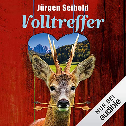 Volltreffer cover art