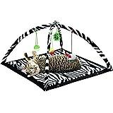 Zebra Print Cat Play Tent Dangle Toys Pets Sleep Play Bed Pad Cushion Kitten Fun