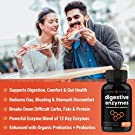 Digestive Enzymes with Prebiotics & Probiotics 180 Vegan Capsules - Better Digestion, Nutrient Absorption - Multi Enzyme Supplement. Helps Bloating, Gas, Discomfort, IBS, Lactose Intolerance #2