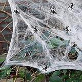 heekpek 130g Tela de Araña con 16 Arañas Decoraciones de Halloween Telarañas Haunted House Arañas de Plástico de Halloween Negras para Materiales de Fiesta de Halloween o Disfraces (2 Sets)
