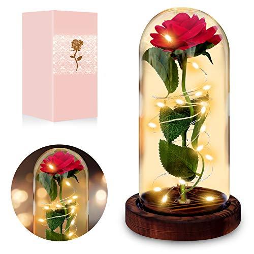 Lamantt Rose Geschenk Kit,Die Schöne und das Biest Rose Ewige Rose im Glas - with LED Light and Gift Box Frau,Freundin,Freunde,Jahrestag,Hochzeit,Geburtstag Geschenk