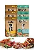 Alimento Natural casero para Perros, húmedo con Carne Fresca y Verduras...