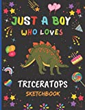 Just A Boy Who Loves Triceratops Sketchbook: New Adorable Triceratops Sketchbook Gifts For Boys .Triceratops Blank Paper Sketch Pad For Creative ... and Doodling.Cute Christmas Gift Idea.v.2