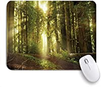 KAPANOUマウスパッド レッドウッドフォレストの春の太陽光線 ゲーミング オフィス最適 おしゃれ 防水 耐久性が良い 滑り止めゴム底 ゲーミングなど適用 マウス 用ノートブックコンピュータマウスマット