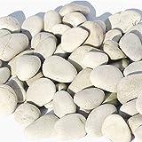 MGS SHOP Flachkies MEDITERRAN Flat-Stone Flacher Kies sehr angenehm begehbar