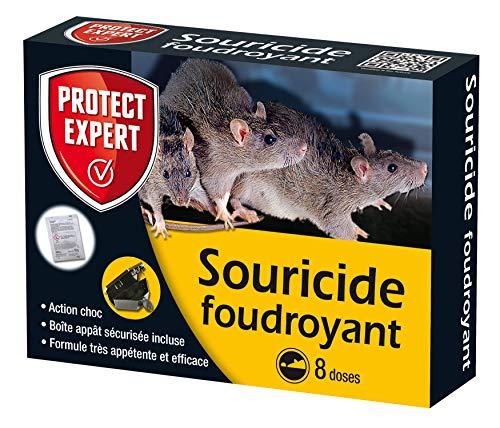 PROTECT EXPERT SOUFOUDC Rats Céréales-8 sachets + boîte d'appatage, lieux secs