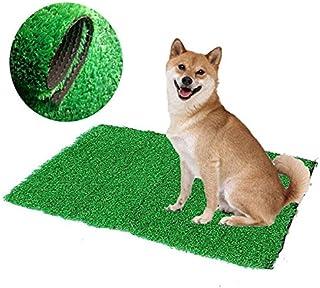 Bureze - Alfombrilla de Inodoro para Perro, Gato, para Interior y Orinal, diseño de césped Artificial