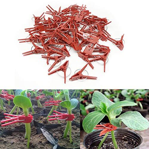 Dizie 50 Stück Pflanzen-Clips aus Kunststoff für Gemüse, Gurken-Clip, Wassermelonen-Klammer, rund, Mund, flach, Aubergine