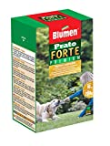 Blumen Prato Forte 200 gr, Verde
