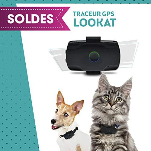 LOCALIZ Lookat Traceur GPS pour Chat et Chien. Le Traceur GPS utilisé dans l'émission la Vie secrète des Chats