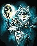HUILIYI Pintura al óleo Niños Paquete de Lobo Nocturno Set de Bricolaje para Pintar por números Kit de Regalo para niños hágalo Usted Mismo Pintura 16 x 20 Pulgadas(sin Marco)