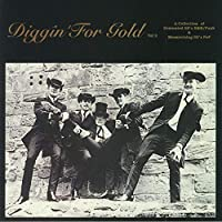 Diggin' for Gold Vol 2 [12 inch Analog]