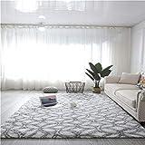DZYP Alfombra súper grosera, antideslizante, a prueba de humedad, a prueba de moho, lavable y lavable a máquina, suave y cómoda alfombra de pelo largo (2 x 3 m, rejilla gris en blanco)
