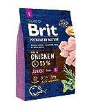 BURBERRY Brit Nourriture sèche pour Chiens 3000 g