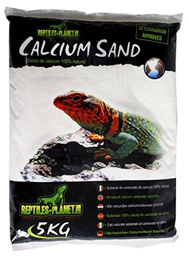 Reptiles Planet Arena de Arena de Calcio para terrarios Sand