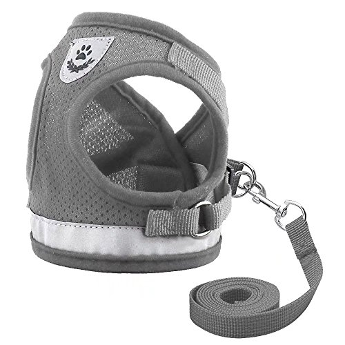 Didog Reflective Dog Cat Vest Harness and Leash Set for Kitten Small Dogs,Escape Proof Mesh Puppy Harnesses for Walking Cat and Small Dogs,Grey,S Size