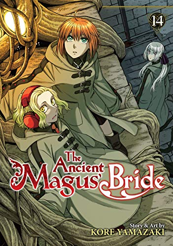 The Ancient Magus' Bride Vol. 14 (English Edition)
