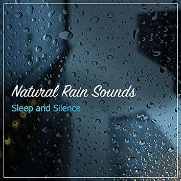 15 Natural Rain Sounds for Sleep And Silence
