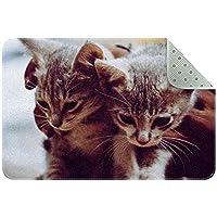 エリアラグ軽量 2匹の子猫 フロアマットソフトカーペットチホームリビングダイニングルームベッドルーム