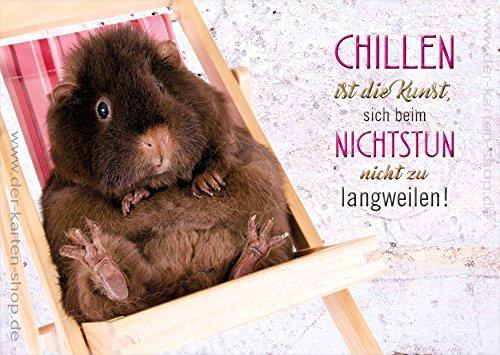 3 Stück A6 Postkarten Karte Grußkarte Meerschweinchen im Liegestuhl