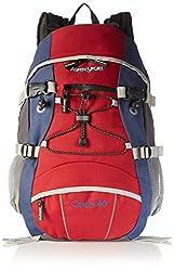 AspenSport Backpack Camel, red / gray, 55 x 35 x 20 cm