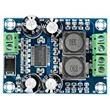 ARCELI XH-M311 Mini Amplificador Digital TPA3118 Placa Amplificador de Audio Módulo Amplificador de Potencia de Audio Mono 60 W