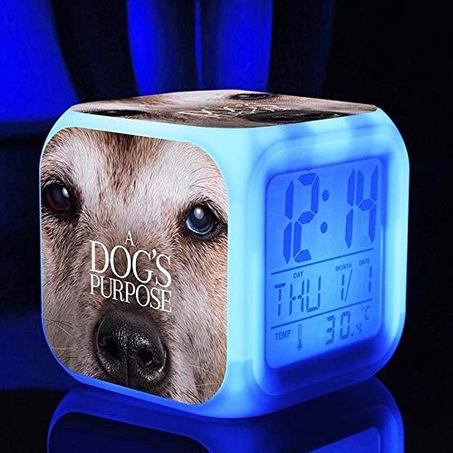 Zhuimin digitale wekker voor tafel, nachtkastje, nachtkastje, gouden reriever van de hond