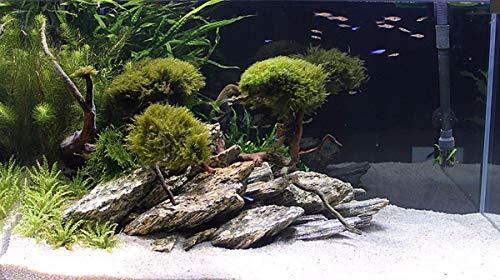 RETNE houten steen aquarium terrarium decoratie natuurstenen decoratie leisteen 3kg