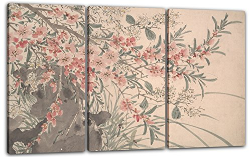 Printed Paintings Impresión Sobre Lienzo 3 Partes(120x80cm): Después de Chen Chun - Flores del ja