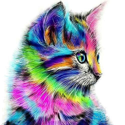 trounistro DIY 5d Diamant malerei Kits, DIY 5D Diamant DIY 5D Diamant Painting Home Wand Decor gemälde Kreuzstich Diamond Dekoration (Bunte Katze, 30 * 30CM)