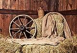Viejo almacén Rural de Madera Granja Tarro Porche Piso Retrato de bebé Fondos fotográficos Fondos de fotografía para Estudio fotográfico A1 10x10ft / 3x3m